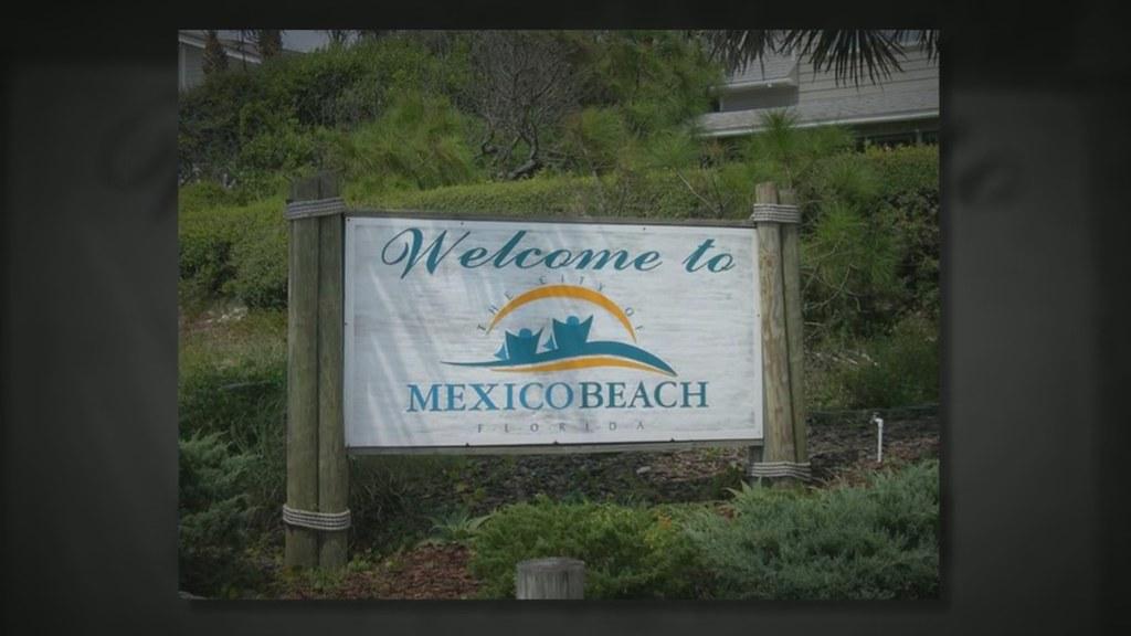 Bear In Mexico Beach Fl