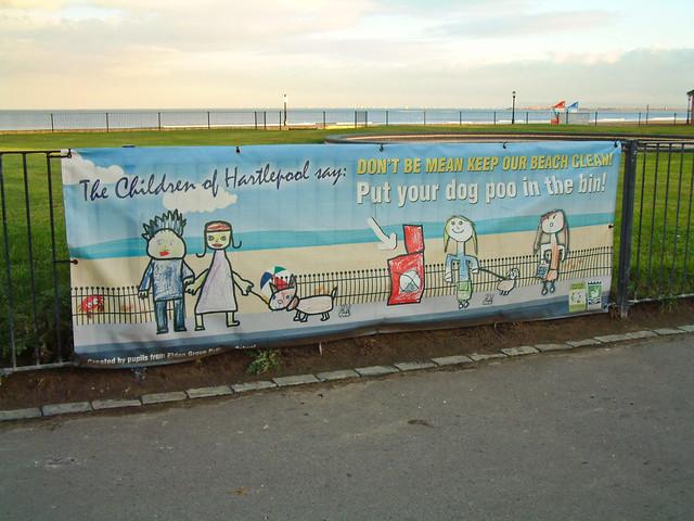 Hartlepool Beach Dog Friendly