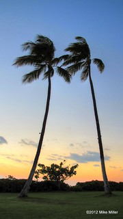 Aloha Beach Resort Wisconsin Dells Reviews