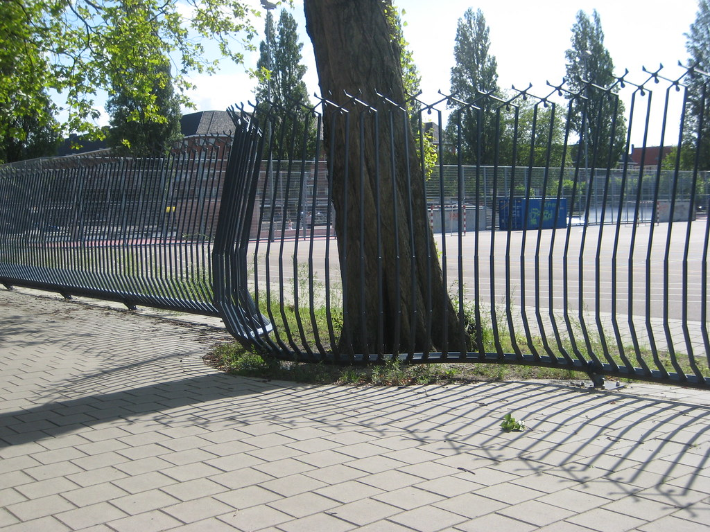 Fence Around A Tree Olympiaplein Rory Hyde Flickr