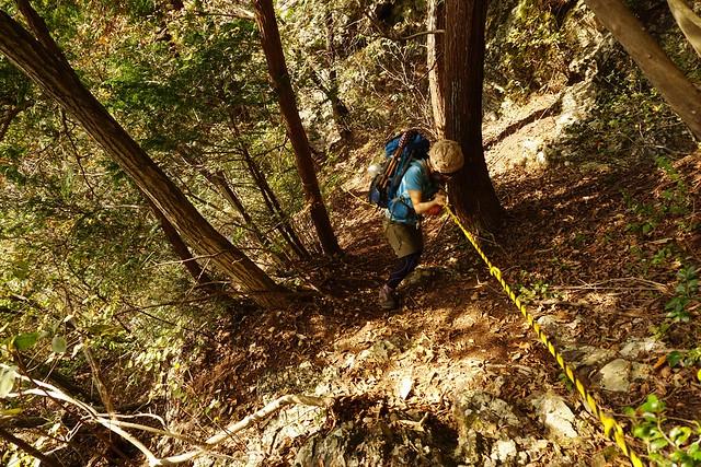 赤岩山下山のロープ