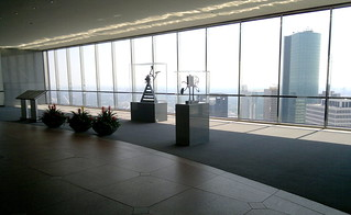 A view from the sky lobby of the Chase tower in Houston | by elnina999