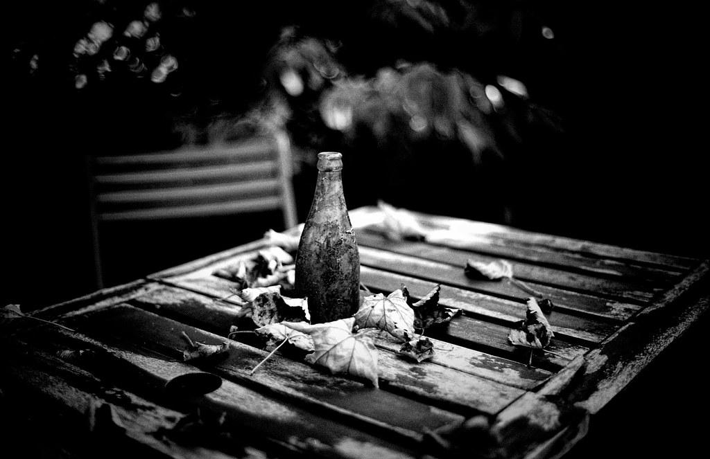 Still life in garden bw by andysnapper1