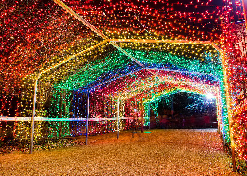 Zoolights Chicago Lincoln Park Zoo Luminous Displays