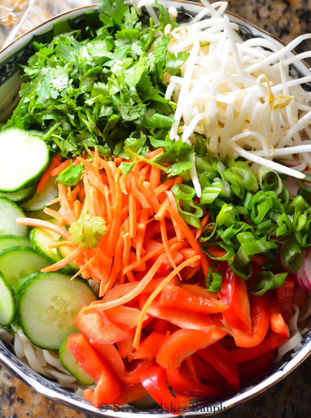 Asian-Noodle-Chicken-Vegetable-Salad-Chili-Scallion-Oil-Cucumber-Red-Bell-Pepper-Radish-Carrot-Scallion-Cilantro-Mung-Bean-Sprouts.jpg