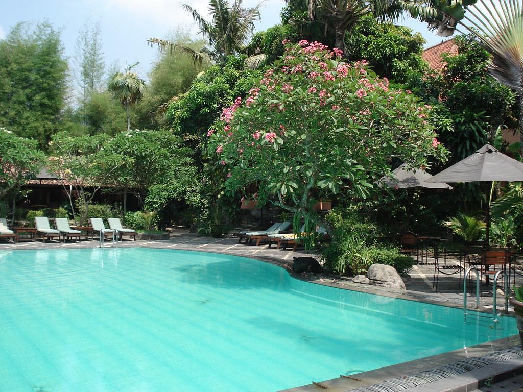 Tropische beplanting rond het zwembad denise baas flickr - Ontwikkeling rond het zwembad ...