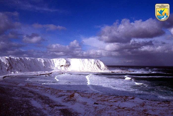 Shemya Island Alaska Photo Dd Gibson Usfws Flickr