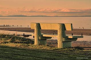 Cresent beach bench
