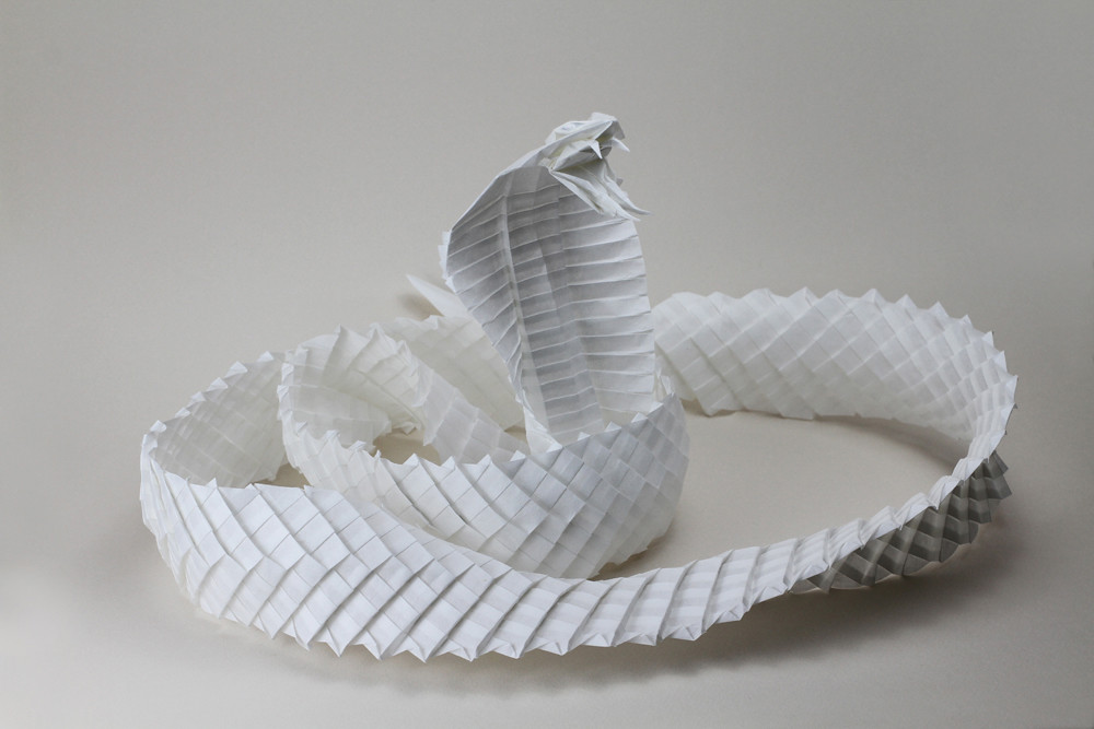 king cobra      Diagram    by Ronald Koh Folded by me Atsukuchi       Flickr