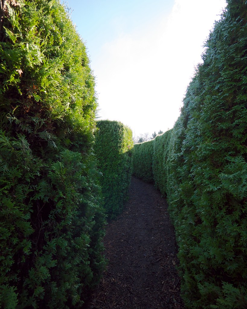 Maze Vandusen Botanical Garden Vancouver Bc Canada Frank Fujimoto Flickr