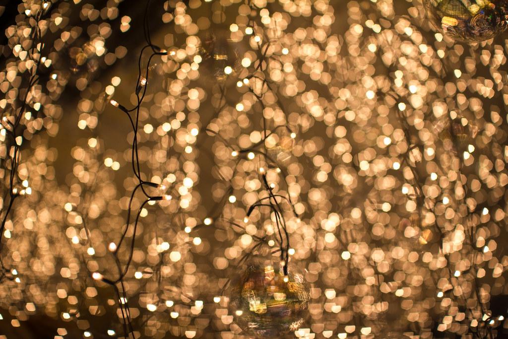 Fairy Lights Explored Jamsil Seoul Korea December