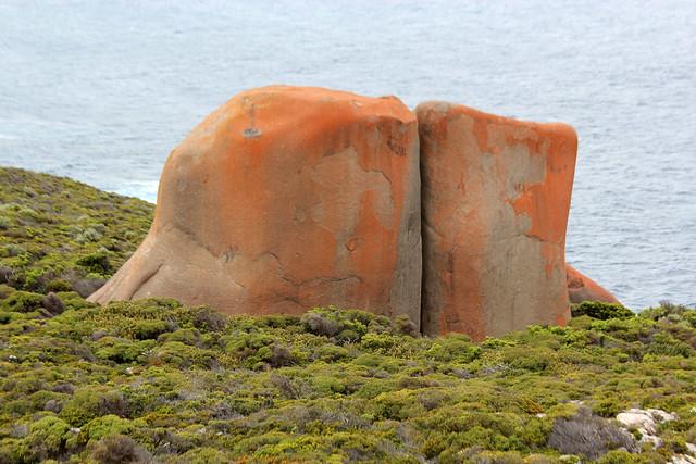 Kangaroo Island Health Retreat Reviews