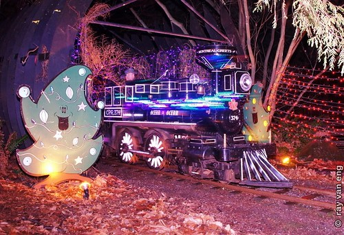 Bright nights at stanley park on a christmas miniatur