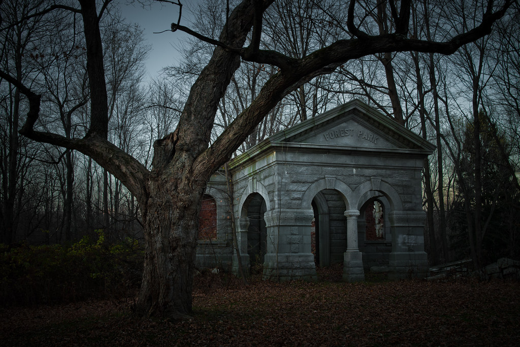 cemetery in the forest - photo #10