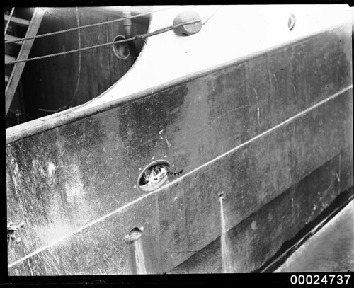 A cat sitting in the fairlead of the barque PAMIR, 1947 | by Australian National Maritime Museum on The Commons