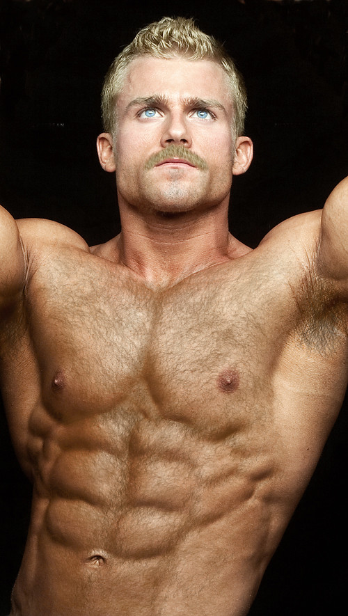 Blond hairy chest