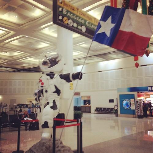 cow astronaut - photo #10