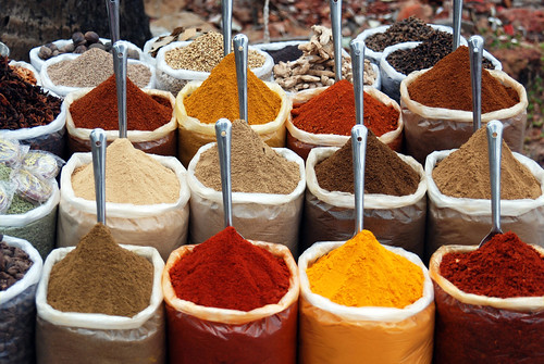 Indian Spices | by sara marlowe