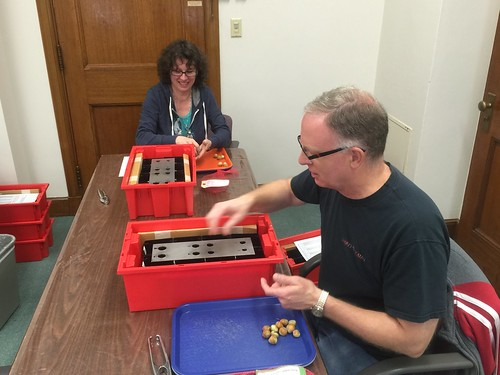 Lab Supervisor Tim Zielke and Enumerator Stephanie Zielke placing hazelnuts in a sizing grid