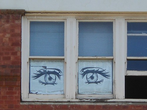 Window Eyes | by mikecogh