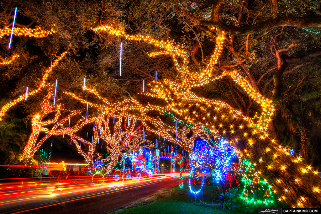 live oaks with christmas lights on neighborhood street