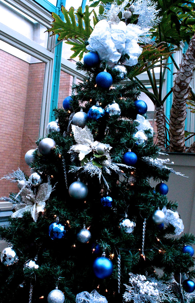 Blue and silver decorated christmas tree festival of for Christmas tree with red and silver decorations
