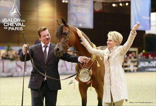 Qr marc championnat du monde du cheval arabe le salon for Salon du cheval montpellier 2017