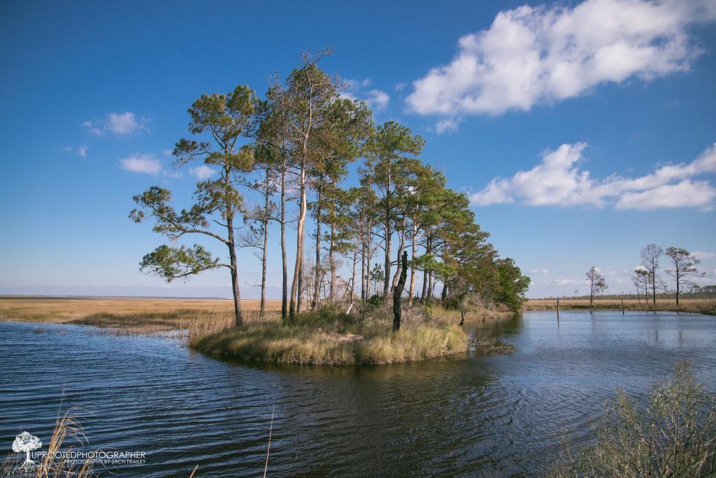Cedar Island Nc Yearly Rental