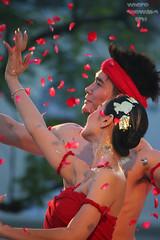 Chiang Mai Fest by globe_trottah