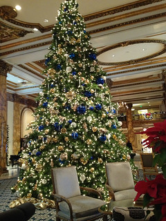 Fairmont Hotel Tree | by laura pants