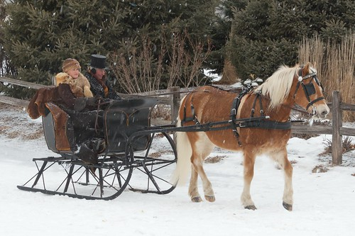 2013 Sleigh and Cutter Festival | by pmarkham