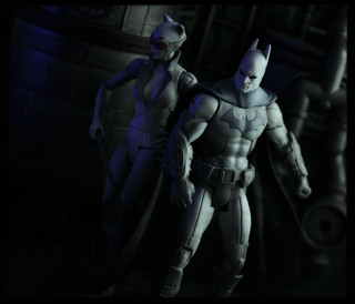 Mattel DC Universe Batman Arkham City - Batman and Catwoman | by Ed Speir IV