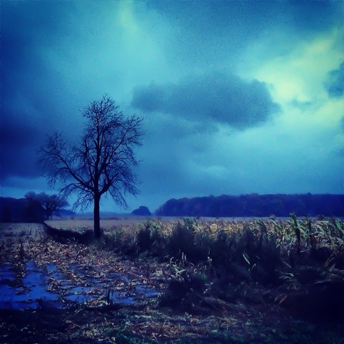 #iphoneography #cold #lonely | by Casey Wertz