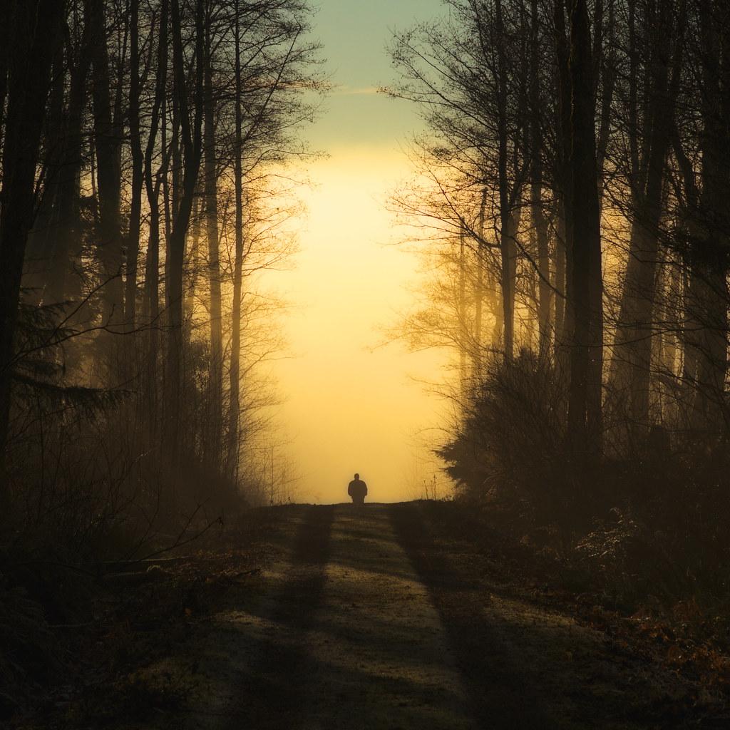 Walking Away by C Day-Lewis
