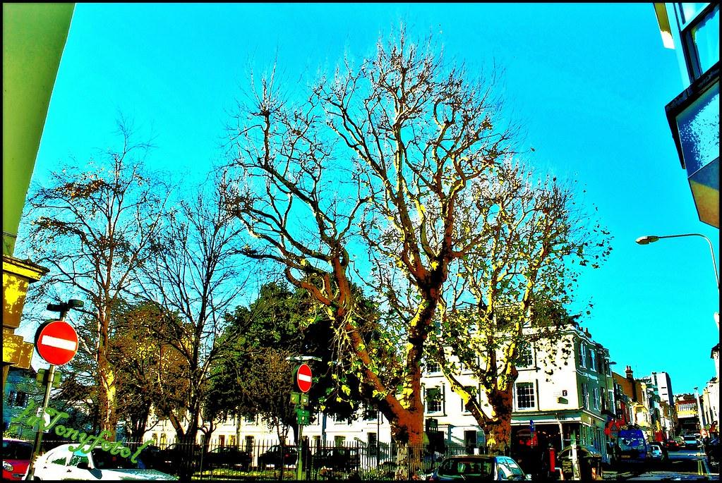 An urban green space un espace vert urbain uno spazio for Espace vert urbain