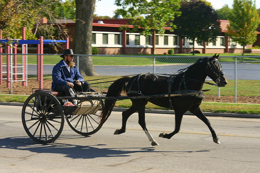 Amish Buggy, Arthur, Illinois | A simple Amish buggy at ...