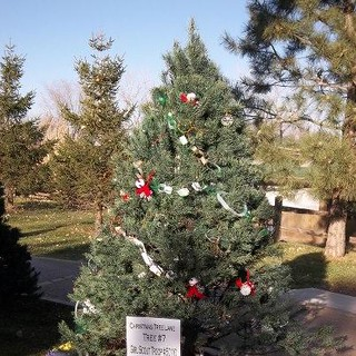 Troop 50110 Christmas Tree Lane | by GS Kansas Heartland