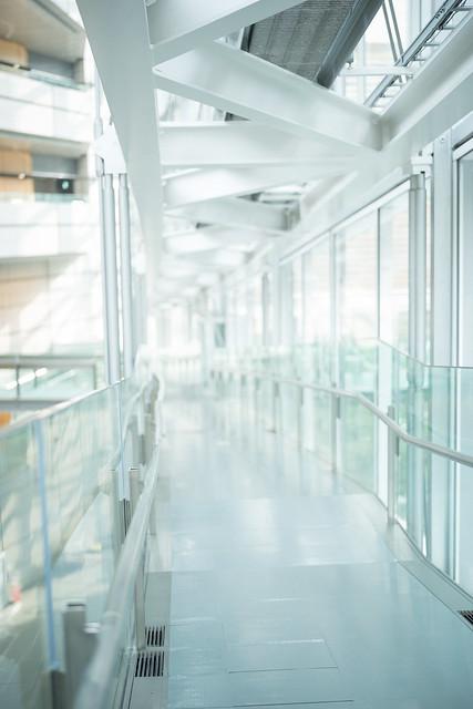 Corridor IV