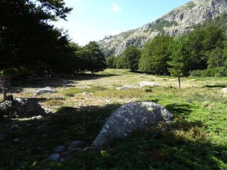 Le chemin de Prati : arrivée sur le pianu du ruisseau de Nursoli