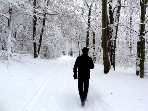 Man walking in a snow-covered forest | by michal_bielecki