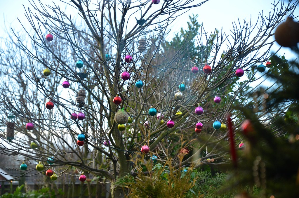 Outdoor tree decorations my nan decorates our tree in for Decorating outdoor trees