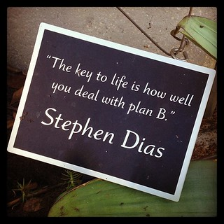 """The key to life is how well you deal with plan B."" 
