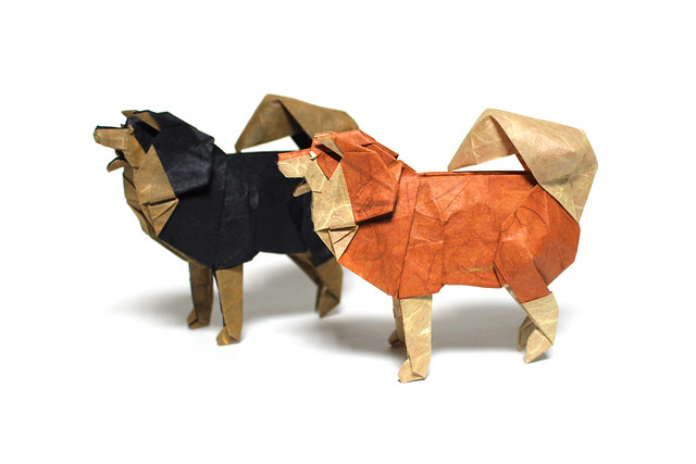 the origami forum u2022 view topic best origami dogs of all rh snkhan co uk