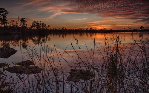 Sunset in Everglades National Park on Christmas Day | by jeannie'spix