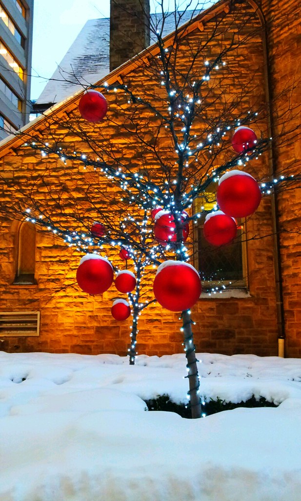 Decorated Christmas Trees For Sale Or Charity Kitchener Waterloo