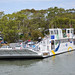 Raymond Island Ferry 02