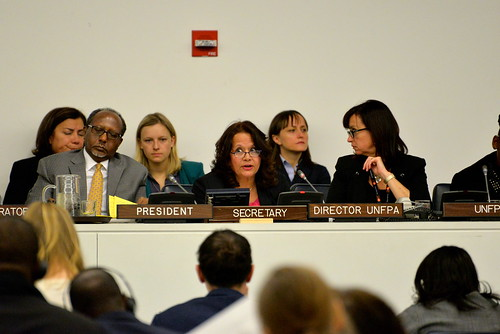 Launch of UNDP's 'Development Advocate' 28 January 2013 | by United Nations Development Programme