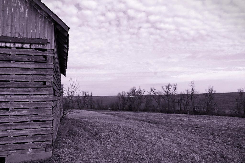 Iowa Landscapes Western Iowa Near Town Of Carroll