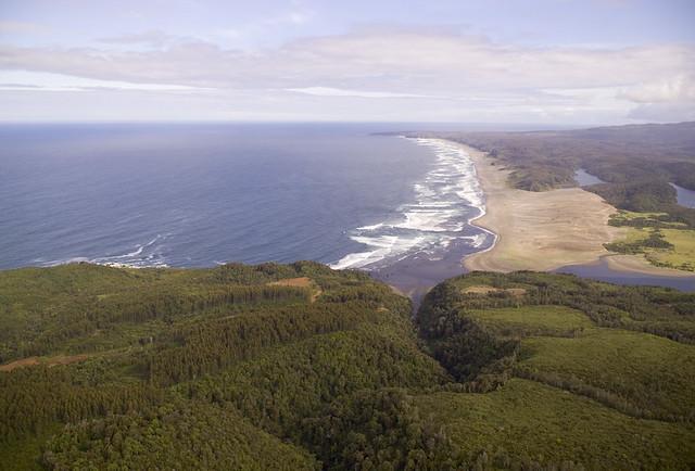 Valdivian Coastal Reserve