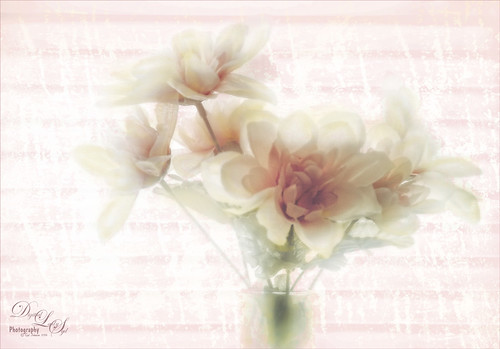 Double Exposure image of some flowers